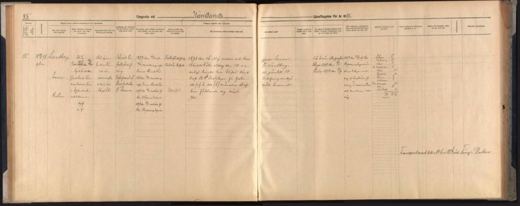 Uppslag i fångrullan för 1893, Jämtlands läns cellfängelse. Fången heter Emma Kristina